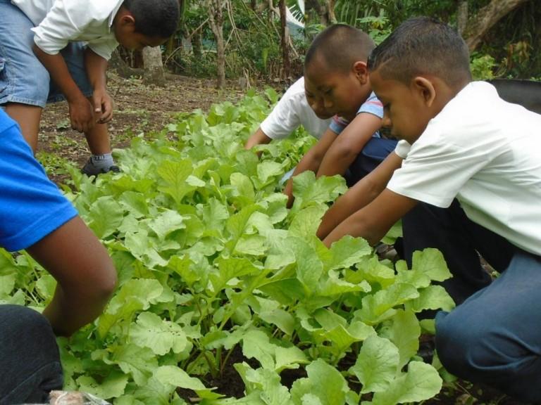 vastenactie Nicaragua