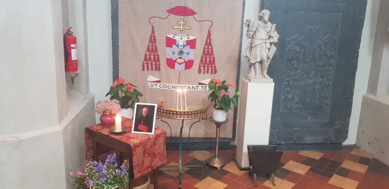 Kardinaal-Simonis kathedraal