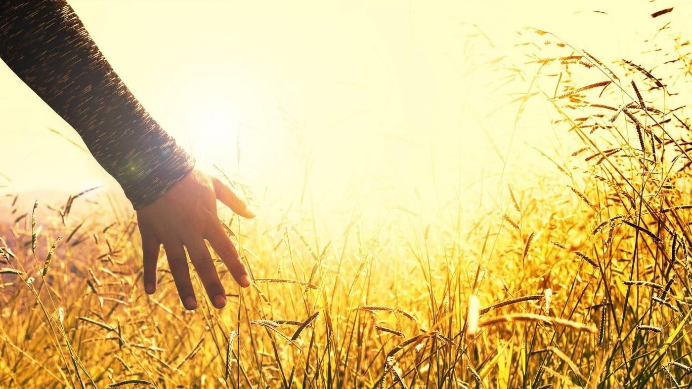 Gesprek-zomer-meditatie